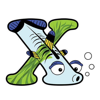 Cartoon X-ray fish | Alphabetimals.com